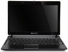 "Packard Bell dot m/a (Athlon 64-M L110 1200 Mhz/11.6""/1366x768/1024Mb/160Gb/DVD нет/Wi-Fi/WinXP Home)"